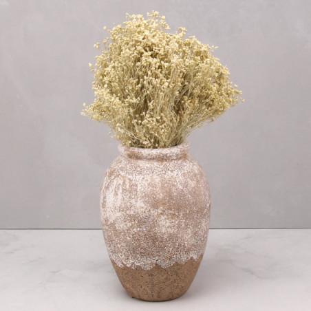 Broom bloom seco blanco (mazo)