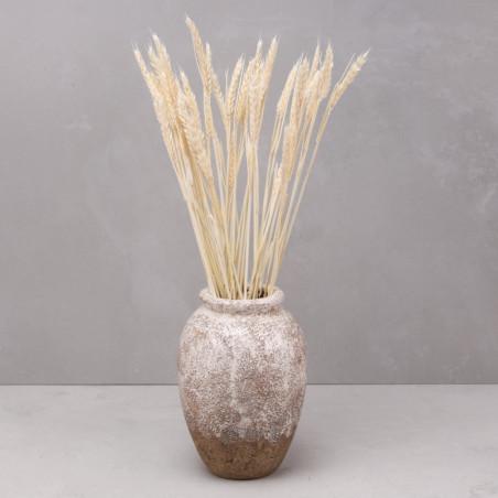 Trigo seco blanco (mazo)