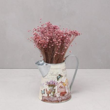 Marcela seca rosa (mazo)